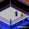 WWF Рестлмания вызов (WWF Wrestlemania Challenge)